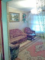 Квартира посуточно в Светлогорске недорого
